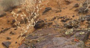 Жаманшың кратерінің аумағы ©