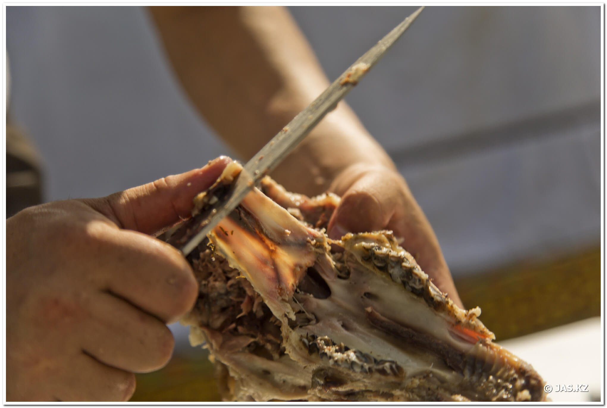 Бас тарту - Подача головы барана ©jas.kz